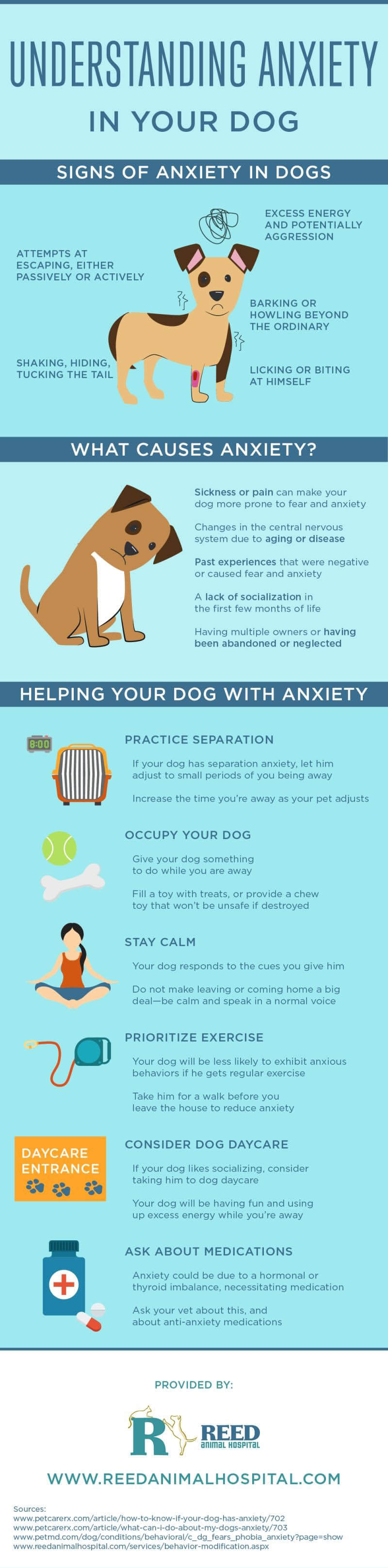 THE GENOME OF DOG SEPARATION ANXIETY - INFOGRAPHICS