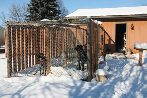 HOMEMADE DOG KENNEL, GUIDE, PLANS, INSTRUCTIONS
