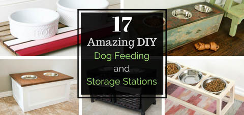 DIY HOMEMADE DOG BOWL, FEEDER, FEEDING STATION, PLACEMAT & TREATS DISPENSER