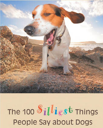 TOP 100 SILLIEST THINGS PEOPLE SAY ABOUT DOGS - Book by Alexandra Semyonova