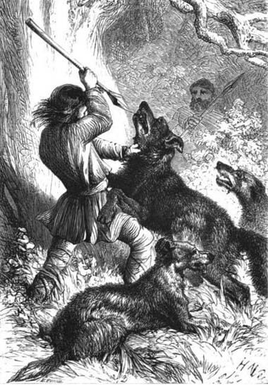 WOLF HUNTING WITH DOGS