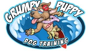 Watch dog and puppy video