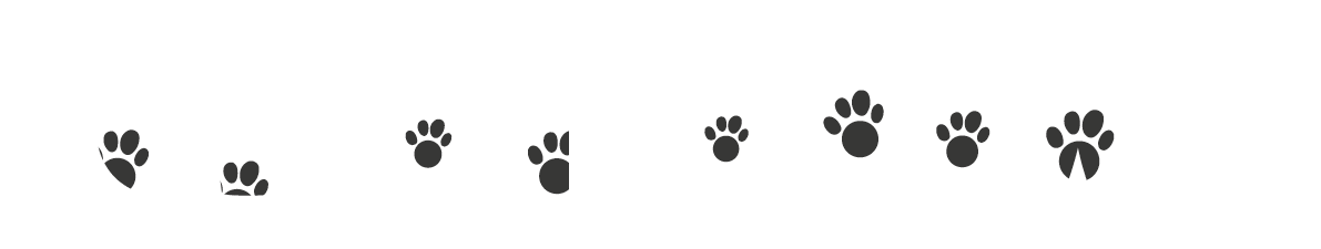 WWW.CLEANERPAWS.COM